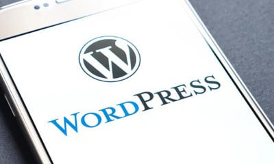 WordPress Websites services company